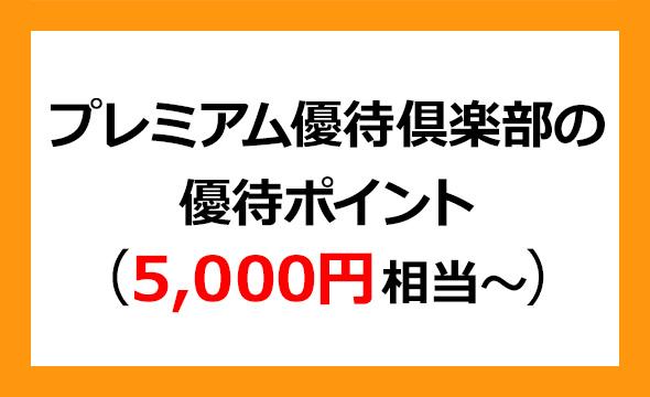 オカダアイヨンの株主優待